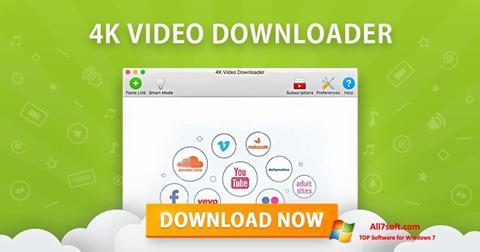 Screenshot 4K Video Downloader Windows 7
