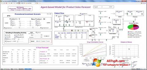 Screenshot AnyLogic Windows 7
